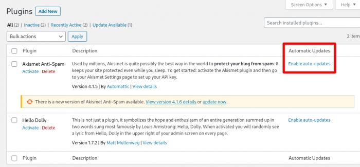 WordPress 5.5 - Auto Update